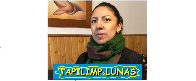 TAPILIMP & LUNAS – Estella/Lizarra